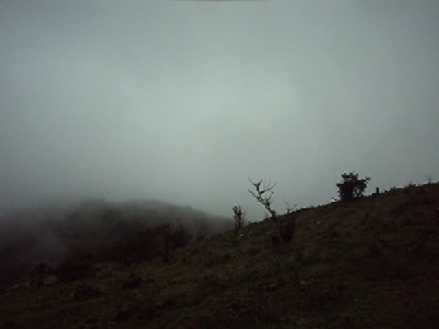 Coorg Videos-Coorg