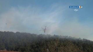 Beykoz'da orman yangını