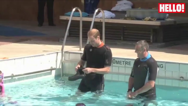 Prince William scuba dives as father Prince Charles looks on
