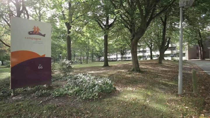 Mosae Wijkzorg - Bedrijfsvideo