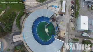 Lolita the Orca Left Uncovered in Miami Seaquarium During Hurricane