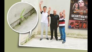 Sincan Cezaevi'nde pes dedirten tahammülsüzlük: Paralel mısırı yeşertmeyin!