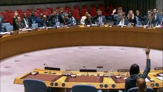 Consejo de Seguridad de ONU respalda cese al fuego en Siria
