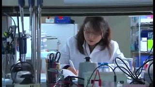 Autoriza EU prueba de vacuna del zika en humanos