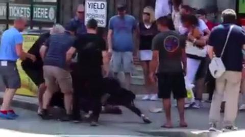 Mujer pelea contra un enorme Pit bull que intentó matar a su perrito