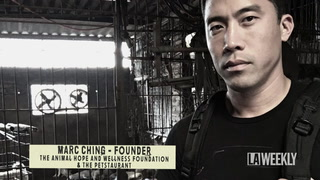 Marc Ching Goes Undercover to Rescue Hundreds of Dogs From Asian Slaughterhouses (Warning: Graphic Material)