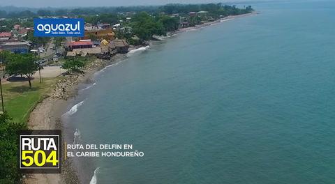 Ruta 504: Ruta del Delfín en el Caribe hondureño