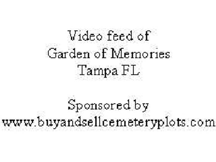 cemetery video feeds garden of memories tampa florida - Garden Of Memories Tampa