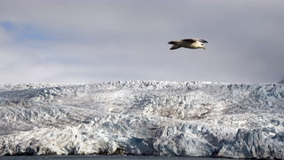 Climate scientists propose refreezing the Arctic to combat global warming