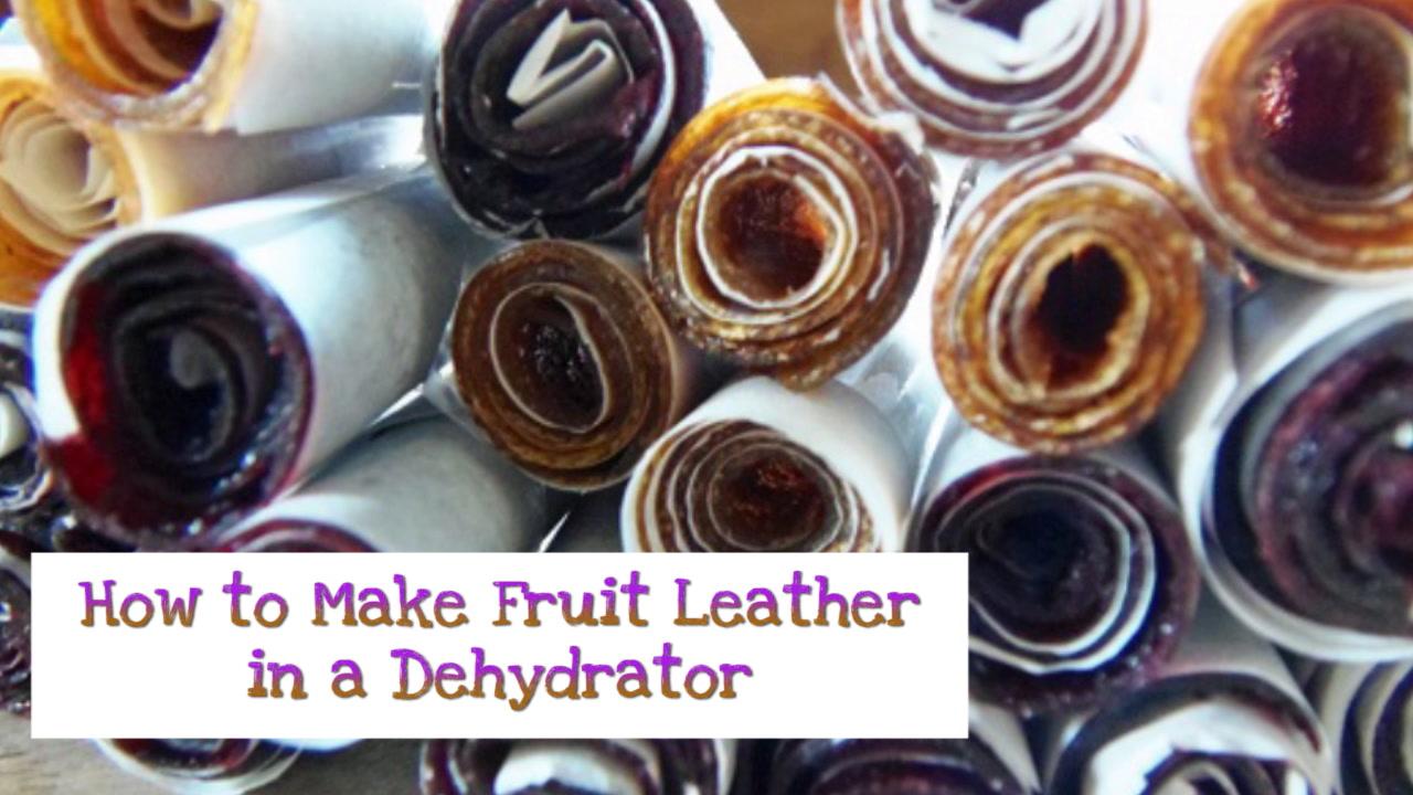Salton Food Dehydrator Instructions Fooddehydrator111jpgsalton