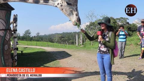Tierra Adentro Verano: Aventuras en Joya Grande, Río Plátano y El Cajón