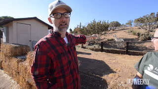 Moby Takes Us On a Tour of Farm Sanctuary
