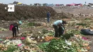 Pepenadores buscan sustento entre toneladas de basura