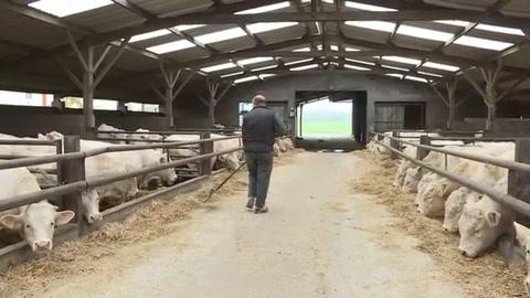 Ganaderos franceses temen llegada masiva de carne sudamericana
