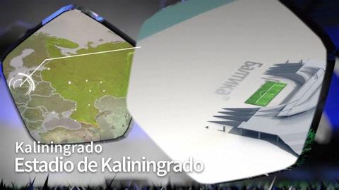 Estadio Kaliningrado Rusia 2018