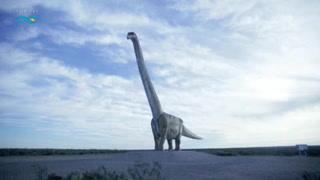 'Patagotitan mayorum', el coloso de los dinosaurios