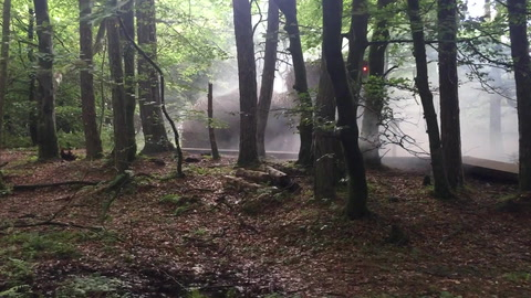 VIDEO: Meet Irish mythical characters in Slieve Gullion Forest park adventure walk