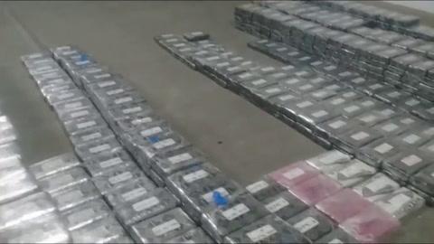 El Ejército mexicano decomisa 800 kilos de cocaína ocultos entre aguacates