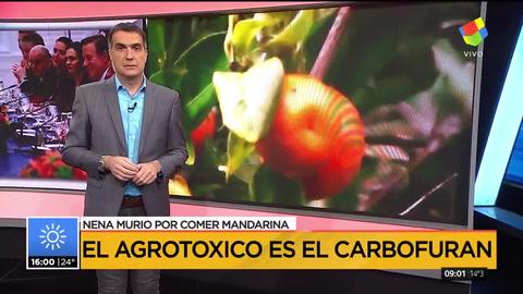 Una nena murió en Corrientes tras comer una mandarina contaminada con agrotóxicos