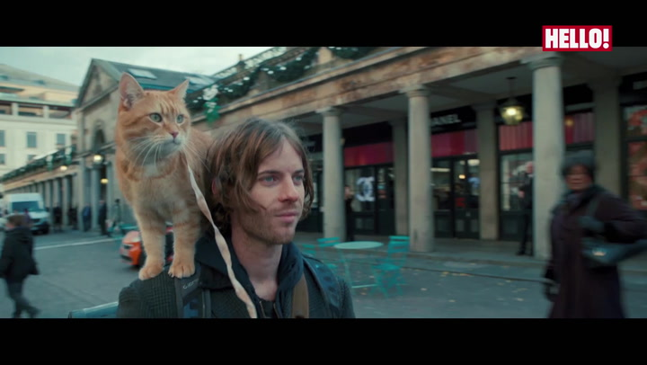 Sneak Peek: A Street Cat Named Bob