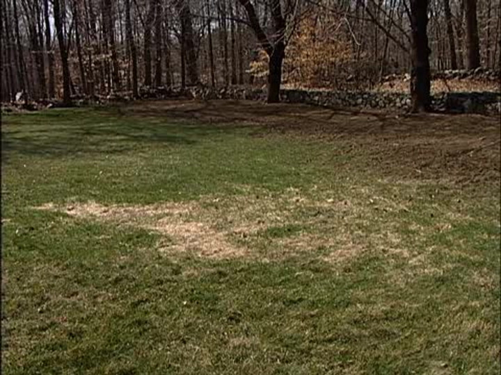 How To Over Seed Bare Spots In A Lawn Ron Hazelton