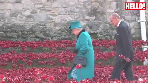 The Queen visits poppy memorial at Tower of London