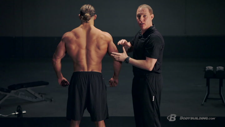 Back Anatomy & Training Program | Built By Science