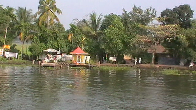 Alappuzha (Alleppey) Videos-Bird sightings during Backwater Cruise