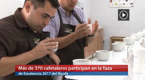Más de 370 cafetaleros participan en la Taza de Excelencia 2017 del Ihcafé