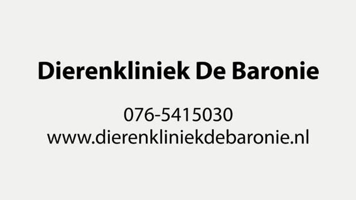 Dierenkliniek De Baronie - Video tour