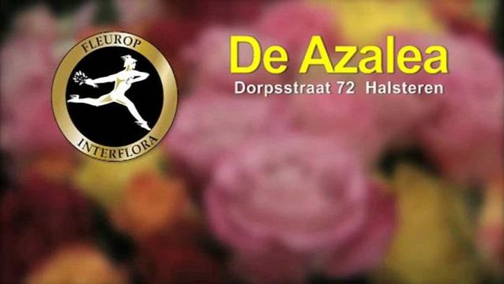 Bloemen Magazijn De Azalea - Bedrijfsvideo
