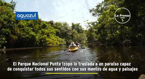 Ruta 504: Parque Nacional Punta Izopo, santuario de biodiversidad