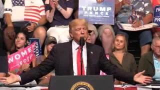 Trump propone un muro 'solar' con México