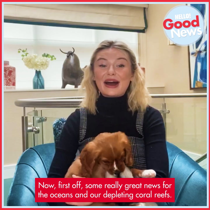 Toff's Hello To Good News - Episode 5