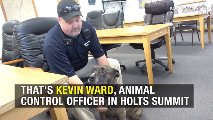 Howling dog, animal control officer from Holt's Summit become viral stars
