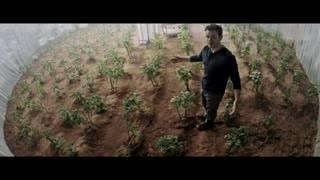 Probable, cultivar en la Luna o Marte