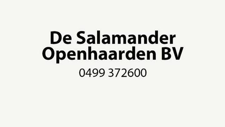Salamander Openhaarden BV De - Bedrijfsvideo