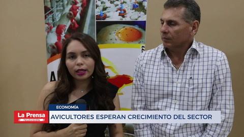 AVICULTORES ESPERAN CRECIMIENTO DEL SECTOR