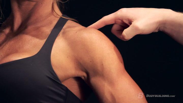 Shoulder Anatomy & Training Program | Built by Science