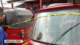 Conductor de vehículo provoca tragedia en la colonia Nueva Capital de Tegucigalpa