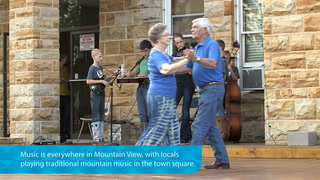 Experience the Roots Vibe of Mountain View Music