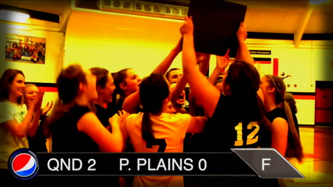 Plains Volleyball Preview