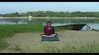 Ici Zen ! Cours de yoga gratuit