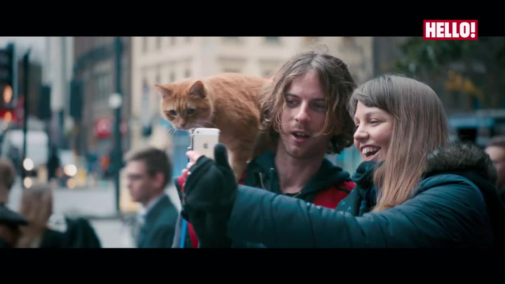 Trailer: A street cat named Bob