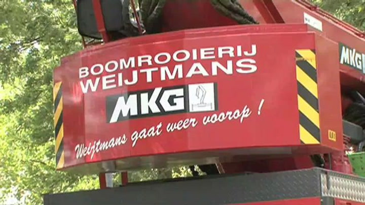Boomrooierij Weijtmans - Video tour