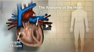 Doctors Jose Nazari, Wes Fisher and Alex Ro discuss atrial fibrillation, what causes it and how it can be treated.