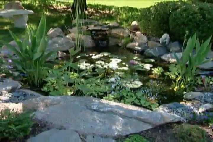 Backyard Fishing Pond how to put a fish pond in your backyard • diy projects & videos