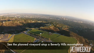 Aerial Look at L.A.'s $1 Billion Estate, Vineyard Beverly Hills, in Full-Party Mode