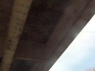 Gli struzzi Il ponte è a rischio ma Regione e Anas se ne infischiano