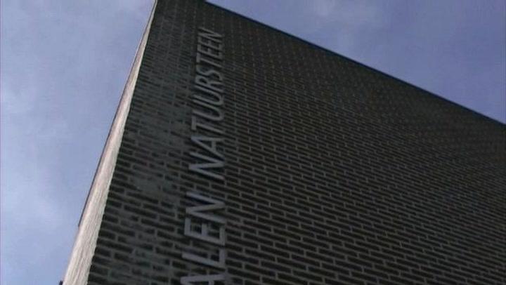 Dalen Natuursteen Vlissingen - Bedrijfsvideo